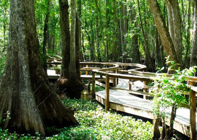 florida-christian-retreat-and-conference-boardwalk-3-sm